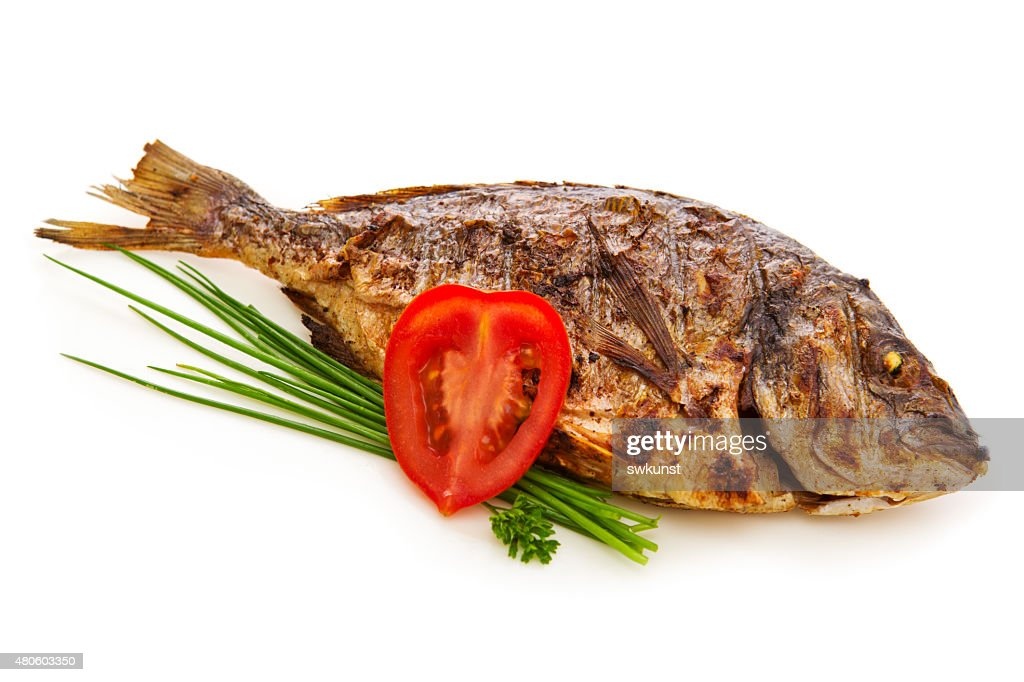 Dorada fish. : Stock Photo