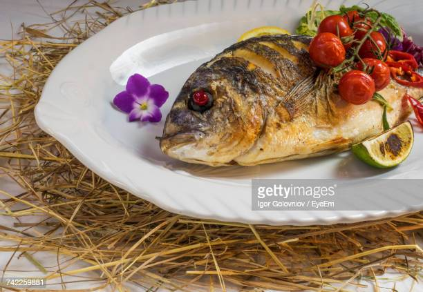 dorado grilled with baked cherry tomatoes on table - dorado fish stock photos and pictures