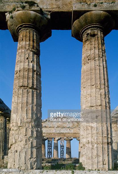 Doric columns of the Temple of Athena also known as Temple of Ceres archaeological area of Paestum Campania Italy Magna Greece civilization 6th...