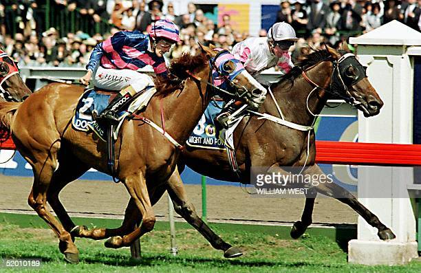 Doriemus with jockey Greg Hall just fails to pip winner Might and Power with jockey Jim Cassidy on the line in the 137th running of the Melbourne Cup...