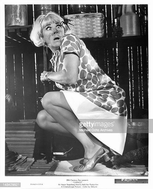 Doris Day comes eye to eye with a tarantula in a scene from the film 'Caprice' 1967