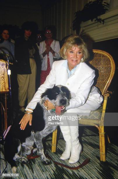 Doris Day with one of her dogs at a press conference at the dog friendly hotel she owns in Carmel California July 16 1985