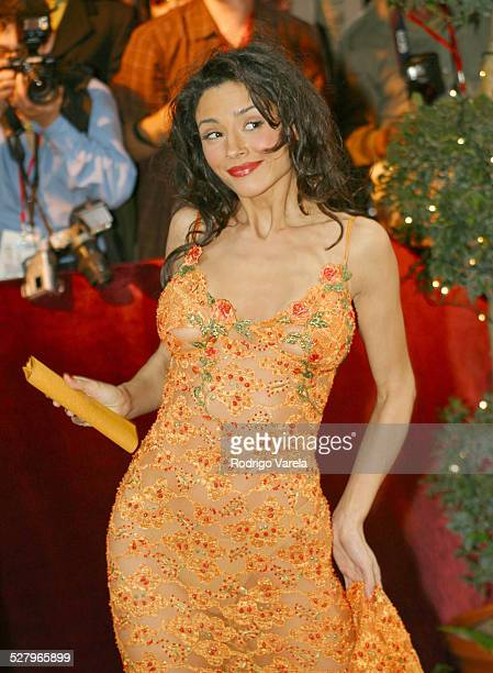 Dorismar during 2003 Premio Lo Nuestro Arrivals at Hyatt Regency Hotel in Miami FL United States
