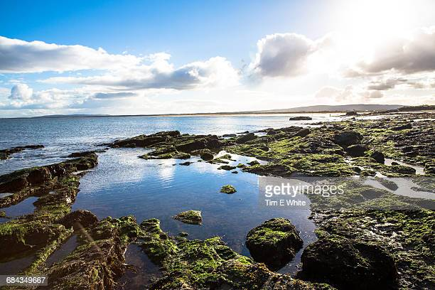 Dornoch coastline, Northern Scotland