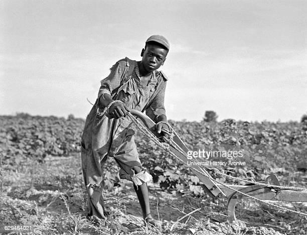 Teenage sharecropper in a field in Georgia, Usa in the Great Depression Era 1937.