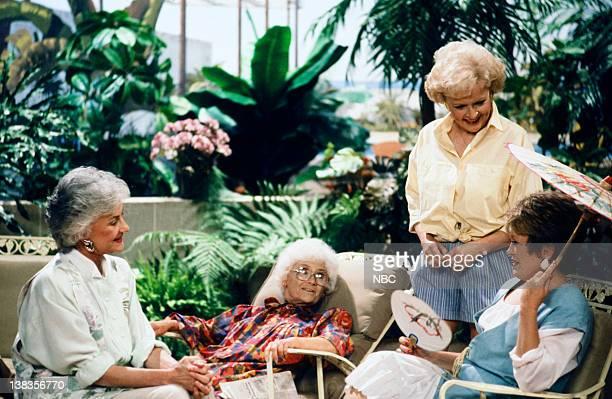 GIRLS Dorothy's Prized Pupil Episode 21 Pictured Bea Arthur as Dorothy Petrillo Zbornak Estelle Getty as Sophia Petrillo Betty White as Rose Nylund...