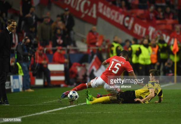 Dortmund's Julian Weigl and Benfica's André Carrillo vie for the ball during the Champions League round of sixteen soccer match between Benfica...