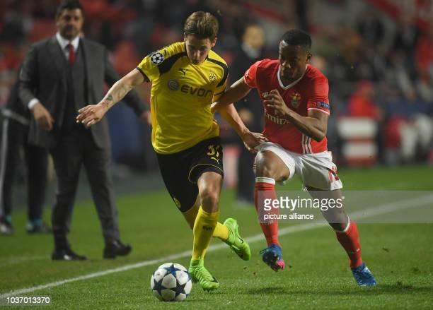 Dortmund's Julian Weigl and Benfica's Eliseu vie for the ball during the Champions League round of sixteen soccer match between Benfica Lissabon and...