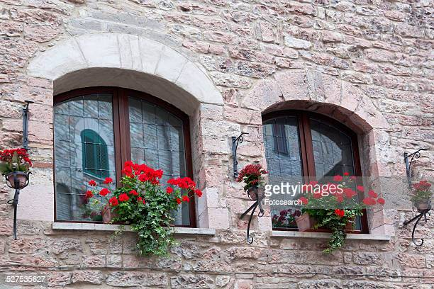 Double arched window of medieval stone palace with decorative red geraniums on window sills