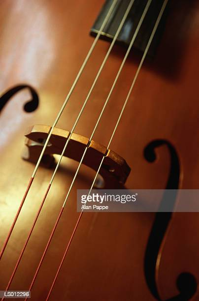 double baa, close-up of bridge - middle bass club stock photos and pictures