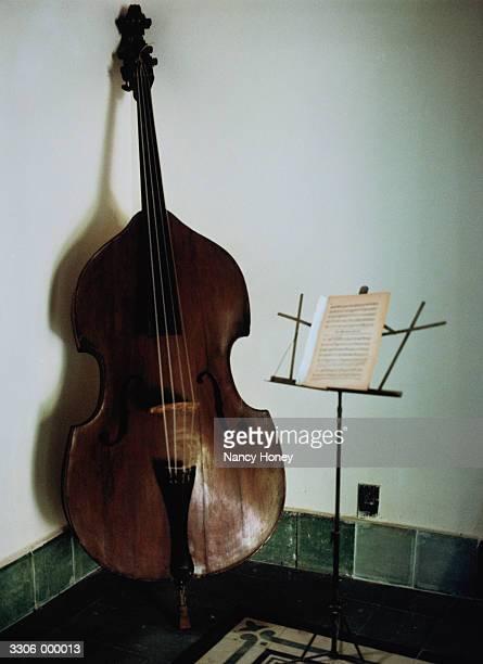 Double Bass in Corner of Room
