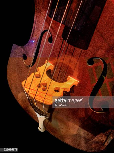 double bass - rob castro stock pictures, royalty-free photos & images