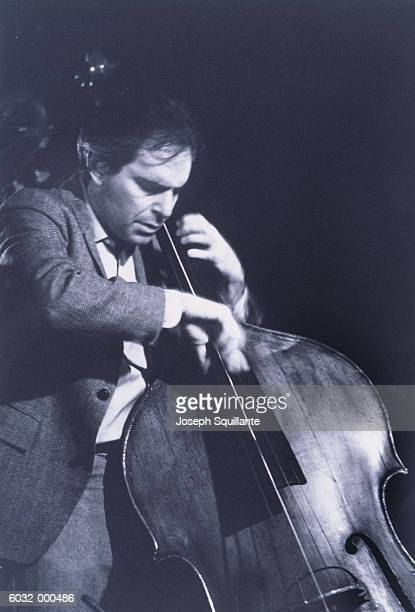 double bassist - joseph squillante stock pictures, royalty-free photos & images