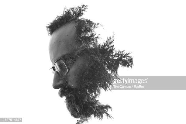 double exposure image of man and tree against white background - human head stock pictures, royalty-free photos & images