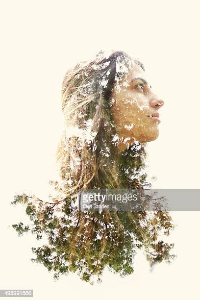 double exposure of a young woman and trees - tête composition photos et images de collection
