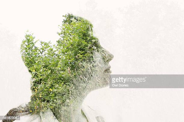 double exposure of a young woman's face and leaves - デジタル合成 ストックフォトと画像