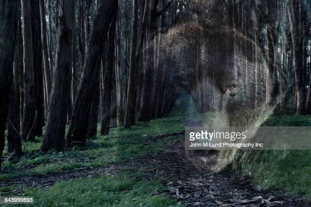 Double exposure of bear in remote forest