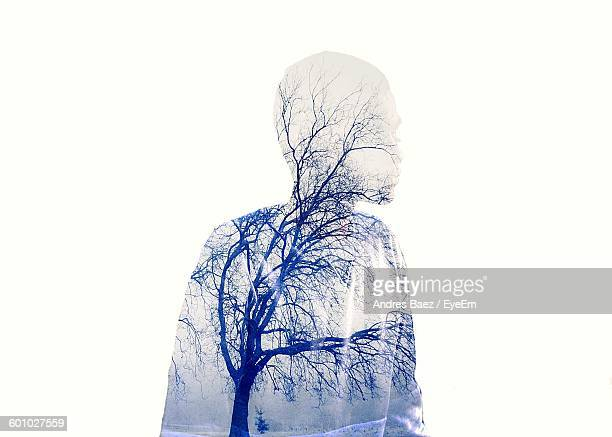 Double Exposure Of Boy And Bare Trees Against White Background