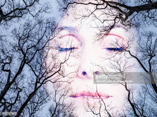 double exposure of face of woman and bare trees - mort concepts photos et images de collection