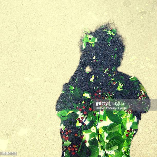 Double Exposure Of Fruit Tree And Shadow On Street