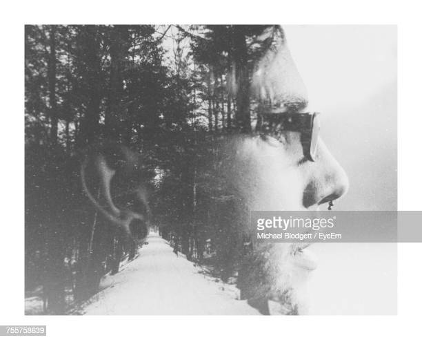 double exposure of man and trees - michael blodgett stock pictures, royalty-free photos & images