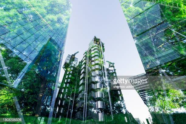 double exposure of trees and buildings - environmental issues stock pictures, royalty-free photos & images