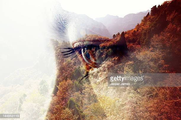 double exposure of woman and nature - nature stock pictures, royalty-free photos & images