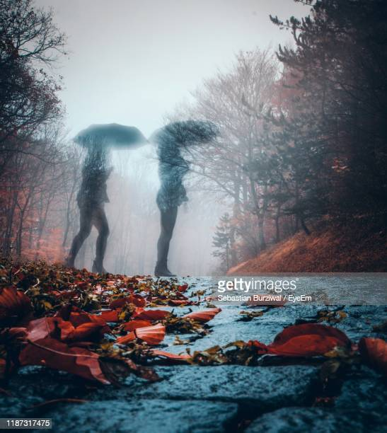 double exposure of women standing on road - digital composite stock-fotos und bilder