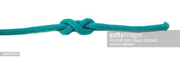 double overhand stopper knot - photostock stock pictures, royalty-free photos & images