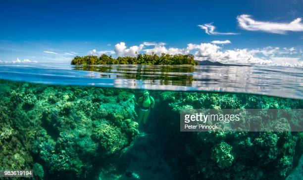 double vision - solomon islands stock pictures, royalty-free photos & images