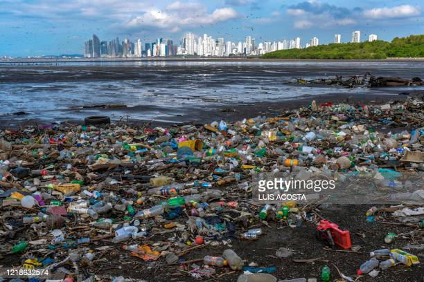 Double-crested cormorant overfly the city as garbage, including plastic waste, is seen at the beach of the Costa del Este neighborhood in Panama...