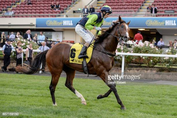 Doubt I'm Dreaming ridden by Jamie Mott after winning the Ascend Sales Valley Pearl at Moonee Valley Racecourse on March 24 2017 in Moonee Ponds...
