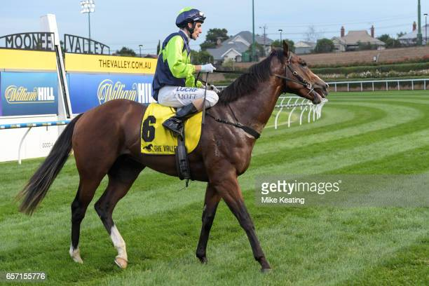 Doubt I'm Dreaming ridden by Jamie Mott returns after winning the Ascend Sales Valley Pearl at Moonee Valley Racecourse on March 24 2017 in Moonee...