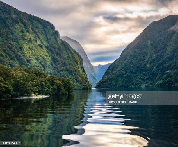 doubtful sound fjord, fiordland, south island, new zealand - new zealand bildbanksfoton och bilder