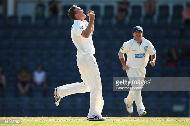 Doug Bollinger of the Blues celebrates dismissing Tim Paine of the Tigers during day two of the Sheffield Shield match between the New South Wales...