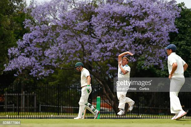 Doug Bollinger of the New South Wales Blues bowls in front of the Jacaranda tree against the Tasmanian Tigers at Bankstown Oval in Sydney Australia...