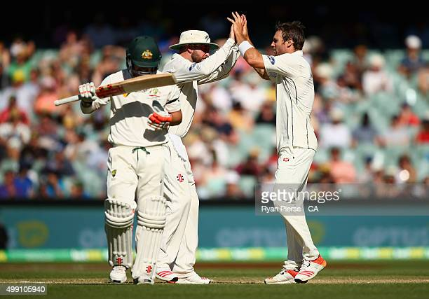 Doug Bracewell of New Zealand celebrates after taking the wicket of David Warner of Australia during day three of the Third Test match between...