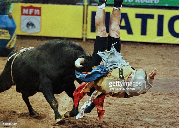 Doug Forzani of Watsonville California gets thrown by the bull 402 during the final goround of the Bull Fighting event 09 December 1999 at the...