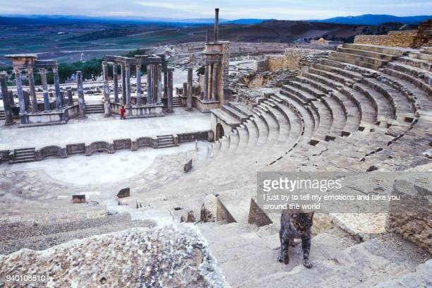 dougga, tunisia, tunis - ancient roman city of dougga, a unesco world heritage site in northern tunisia - tunis stock pictures, royalty-free photos & images