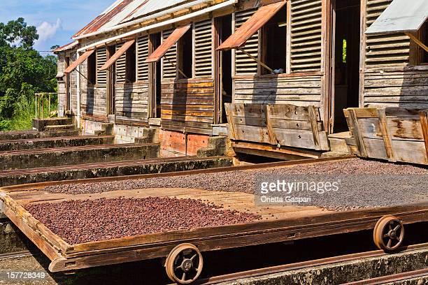 Douglaston Spice Estate, Grenada W.I.