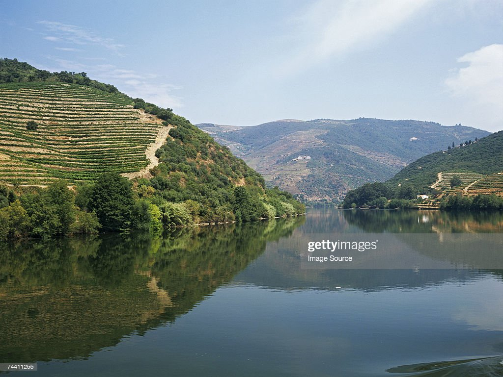 Douro river and valley : Stock Photo