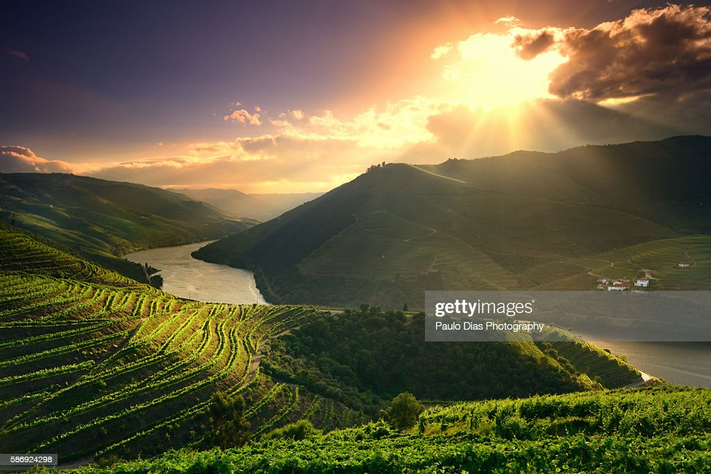 Douro River at sunset : Stock Photo