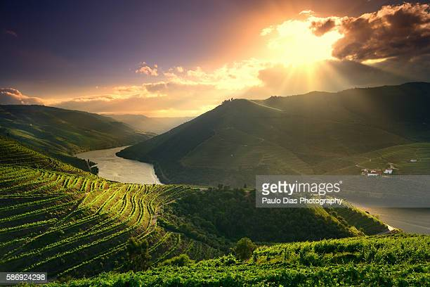 douro river at sunset - portugal stock pictures, royalty-free photos & images