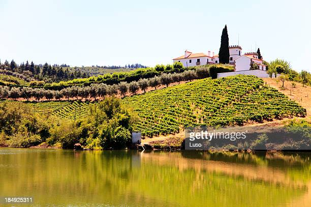 Douro slopes