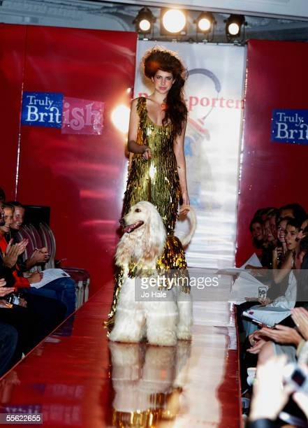 Doushman the Afghan dressed in Ben de Lisi gold sequin coat at the PetAPorter dog Fashion Show and champagne reception celebrating Harrods' wide...