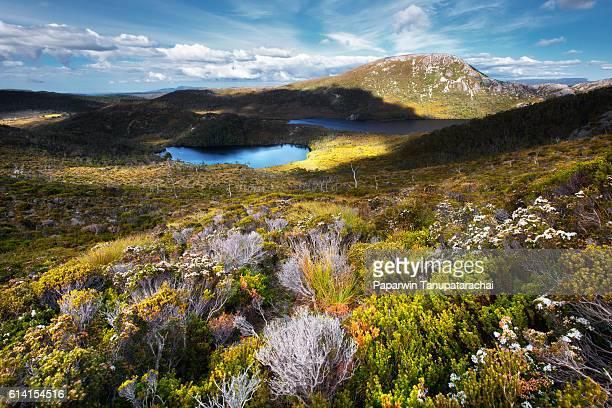 dove lake view - タスマニア州 ストックフォトと画像