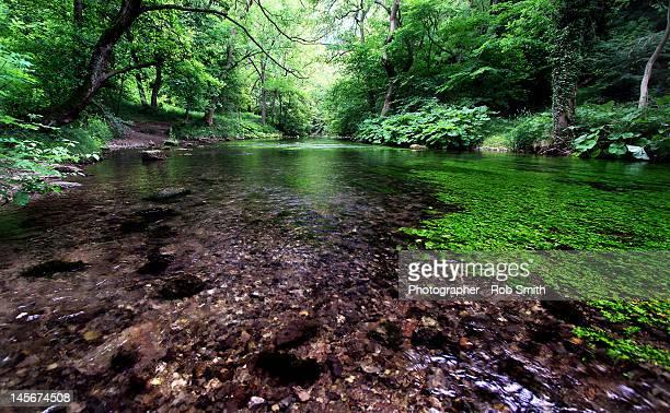 Dovedale - Derbyshire