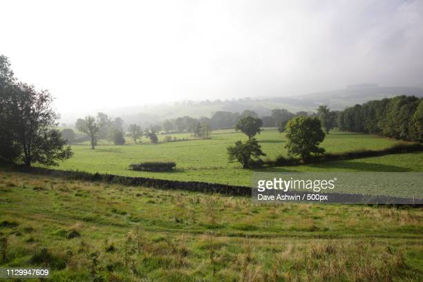dovedale - dave ashwin stock pictures, royalty-free photos & images