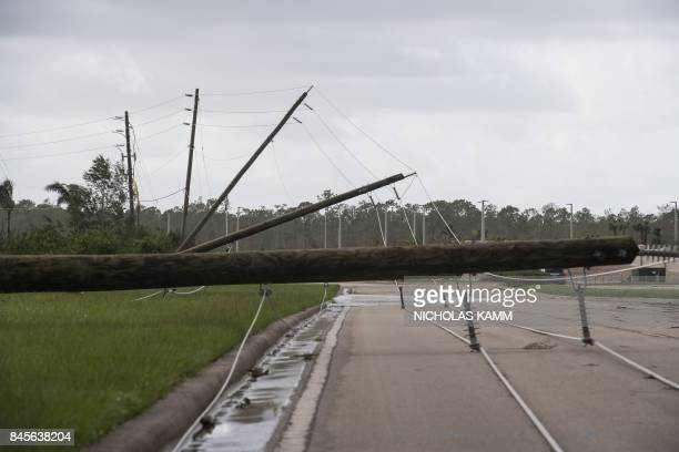 Downed power lines are seen in Bonita Springs Florida northeast of Naples on September 11 2017 after Hurricane Irma hit Florida / AFP PHOTO /...