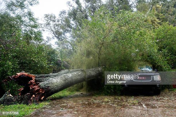 A downed tree from high winds rests against a car in a residential community after Hurricane Matthew passes through on October 7 2016 in Ormond Beach...